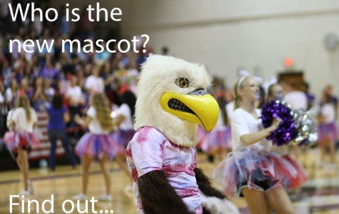 Cheer sponsors announce new mascot