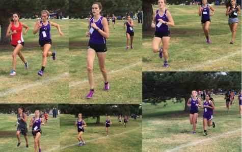 Lady Eagle cross country claim second to Lady Raiders