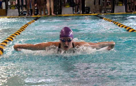 District champion swim team competes at region for second year