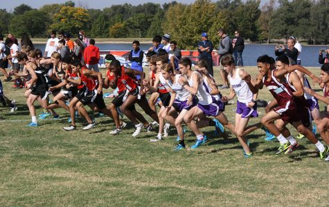 Cross country teams to compete in regional meet