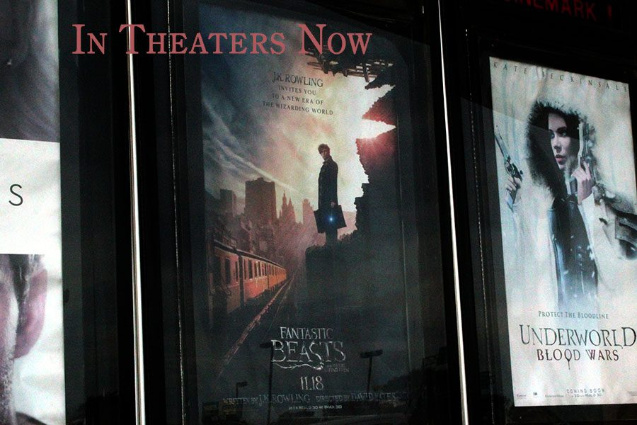 The+latest+installment+in+J.K.+Rowling%27s+wizarding+world+was+released+in+theaters+Nov.++18.