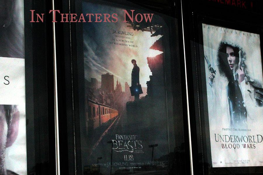 The latest installment in J.K. Rowling's wizarding world was released in theaters Nov.  18.