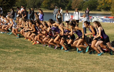 Two named to All-State Cross Country Team