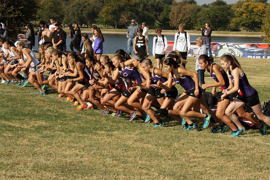 The Varsity Girls Cross Country Team runs in the District Cross Country Meet at Thompson Park.