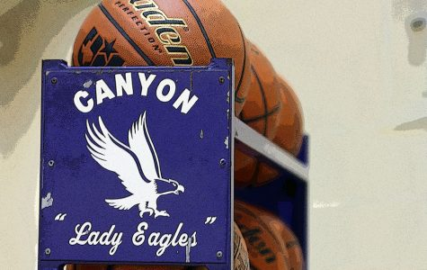 Basketball teams to play Dumas Jan. 6