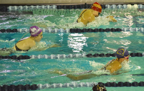 Swim team finishes season at regionals