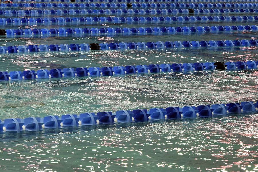 The swim team will compete at the region meet Feb. 2-3.