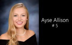 Alternate Text Not Supplied for 5- Ayse Allison.