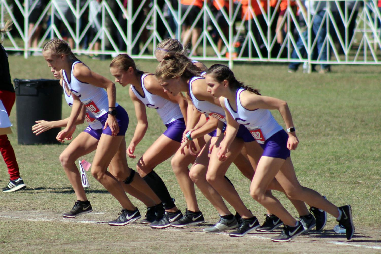 The girls cross country team finished first at the state meet.