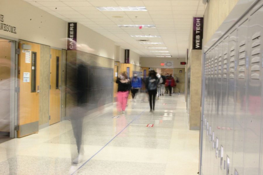 Our hallowed halls
