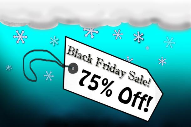 Alternative shopping options outshine Black Friday frenzy