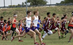 Cross country teams to run at state