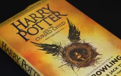 'Harry Potter' installment suffers curse