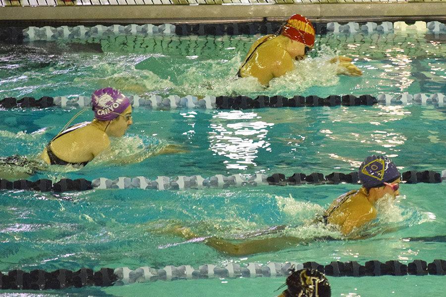 Sophomore Julia Parrott swims at an invitational meet.