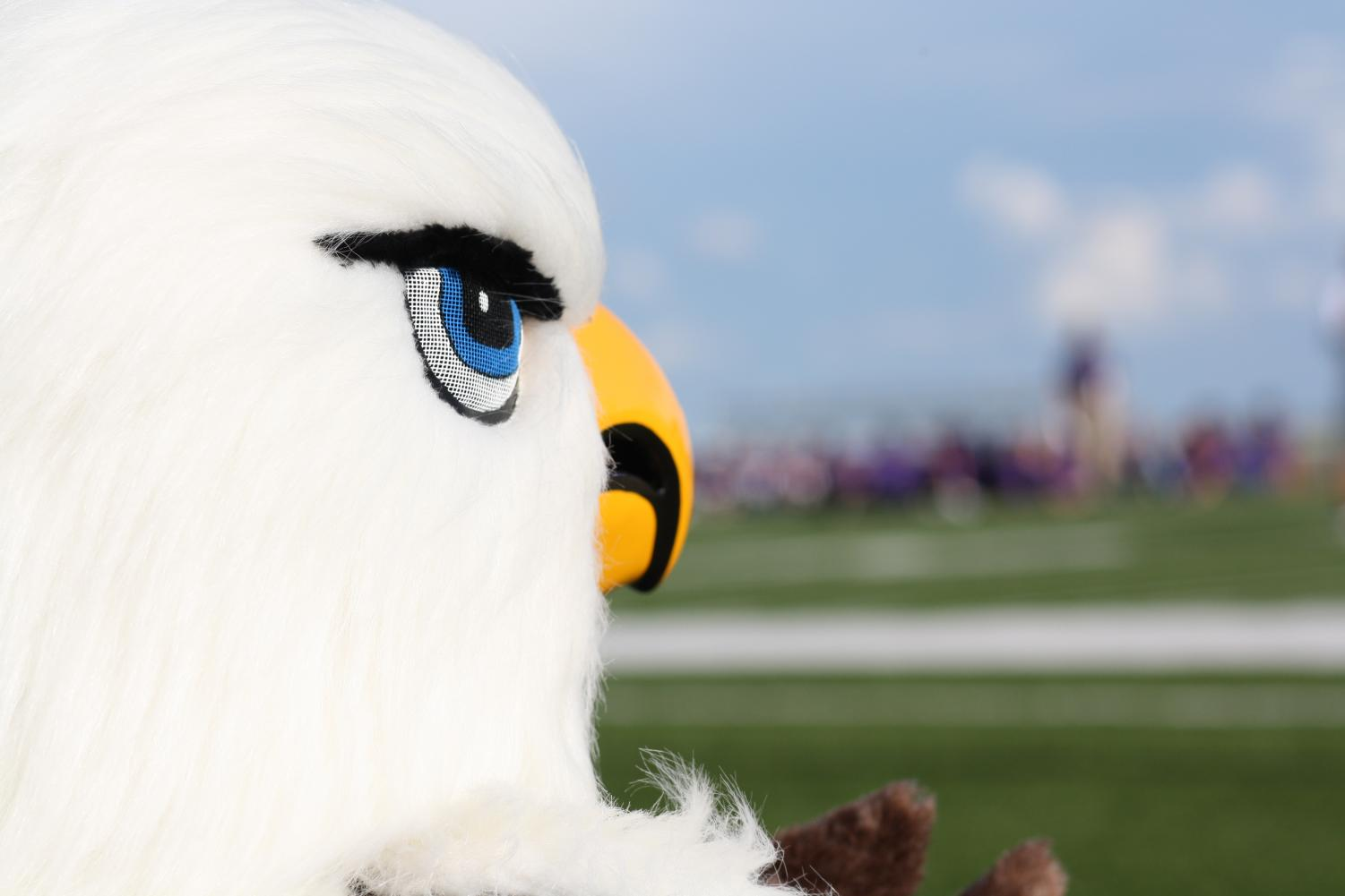 The mascot watches from the sidelines during last year's Meet the Eagles event.