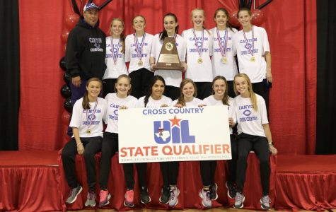 Cross country teams head to state meet