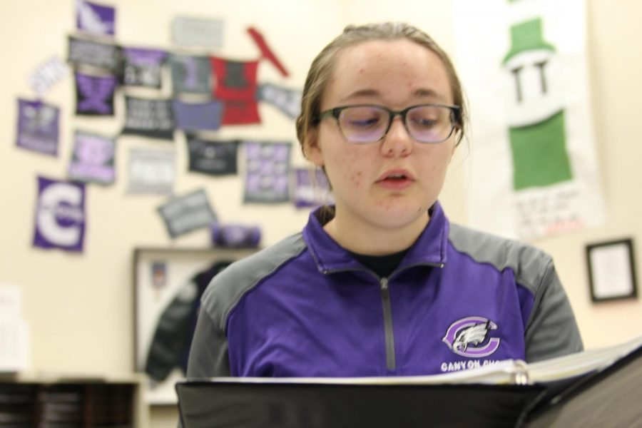 Junior Lisa  Kelch practices her audition music for the Pre-Area competition.