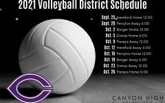 2021 Varsity Volleyball roster, schedule